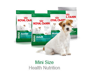 Mini Size Health Nutrition