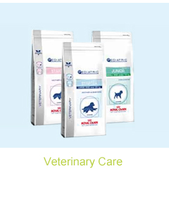 Dog Veterinary Care