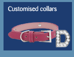 customised collars