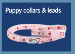 puppy collars and leads