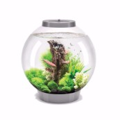 biOrb with Light 30ltr Silver Coldwater Aquarium Kit