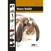 About Pets House Rabbit Hardback Book