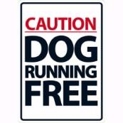 Caution Dog Running Free