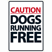 Caution Dogs Running Free