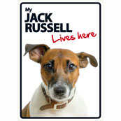 Jack Russell Lives Here (Flexi Sign)