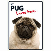 Pug Lives Here (Flexi Sign)