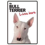 Bull Terrier Lives Here