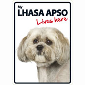 Lhasa Lives Here