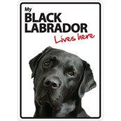 Black Labrador Lives Here (Flexi Sign)