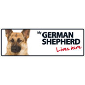 German Shepherd Lives Here