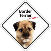 Border Terrier On Board