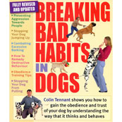 Breaking Bad Habits in Dogs (2)
