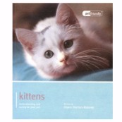 Kittens Pet Friendly
