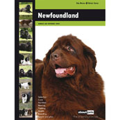 Newfoundland About Pets