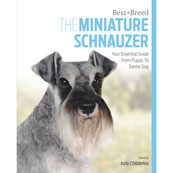 Miniature Schnauzer by Best of Breed