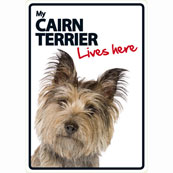Cairn Terrier Lives Here