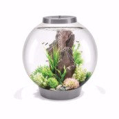 Big BiOrb with Light 60ltr Silver Coldwater Aquarium Starter Kit