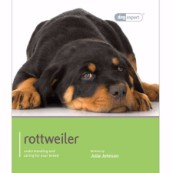 Rottweiler by Dog Expert