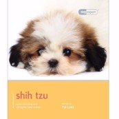 Shih Tzu by Dog Expert