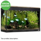 Roma 125 Aquarium  (In Selected Stores)