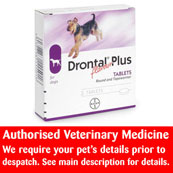 Drontal Flavour Plus Worming Tablets 2 Pack for Dogs