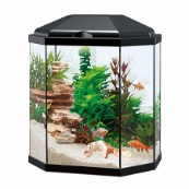 25 Litre Aquarium Black  (In Store)