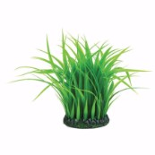 Medium Plastic Grass Ring Aquarium Plant
