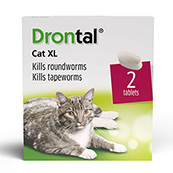 Drontal XL Worming Tablets 2 Pack for Cats