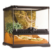 Vivarium 30 x 30 x 30cm by Exo Terra (Available in Selected Stores Only)