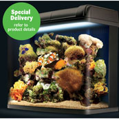 Fish Box Pro 94 Tank (Store Only)