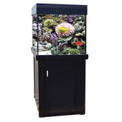 AquaReef 275 Cabinet  (In Store)
