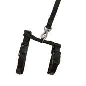 Black Stretchy Kitten Harness