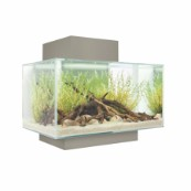 Fluval Edge 23L Aquarium Set in Gloss White (In Store Only)
