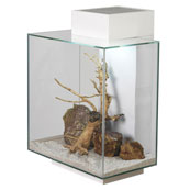 Fluval Edge Aquarium 46L in Gloss White (Available In Store Only)