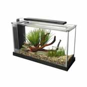 Fluval Spec V Black (In Selected Stores)
