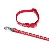 Red Bones Puppy Collar and Lead Set