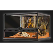 Vivarium Kit Small (In Store Only)