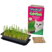 Vitakraft Cat Grass (Online Only)