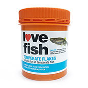 Love Fish Temperate Food