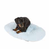 Puppy Plush Oval Blue Cushion