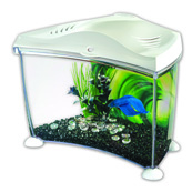 Marina 7l Betta Tank White