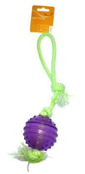 Ball On A Rope Dog Toy