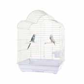 Rainforest Cage Brasilia (Online Only)