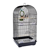 Rainforest Cage Caracas (Online Only)