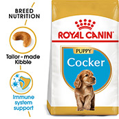 Royal Canin Cocker Junior 3kg (Online Only)