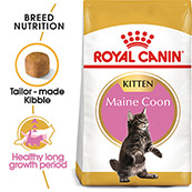 Royal Canin Maine Coon Kitten 4kg (Online Only)