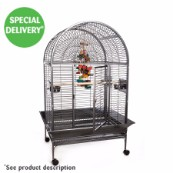 Rainforest Cages Santa Marta 1 Antique Cage (Online Only)