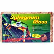 Lucky Reptile Spaghnum Moss Brick 100g (Online Only)
