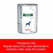 Royal Canin Vet Diet Obesity Manage Canine Wet 12 x 410g (Online Only)