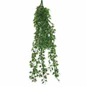 Namiba Terra Hanging English Ivy Plastic Plant 70-75cm (Online Only)
